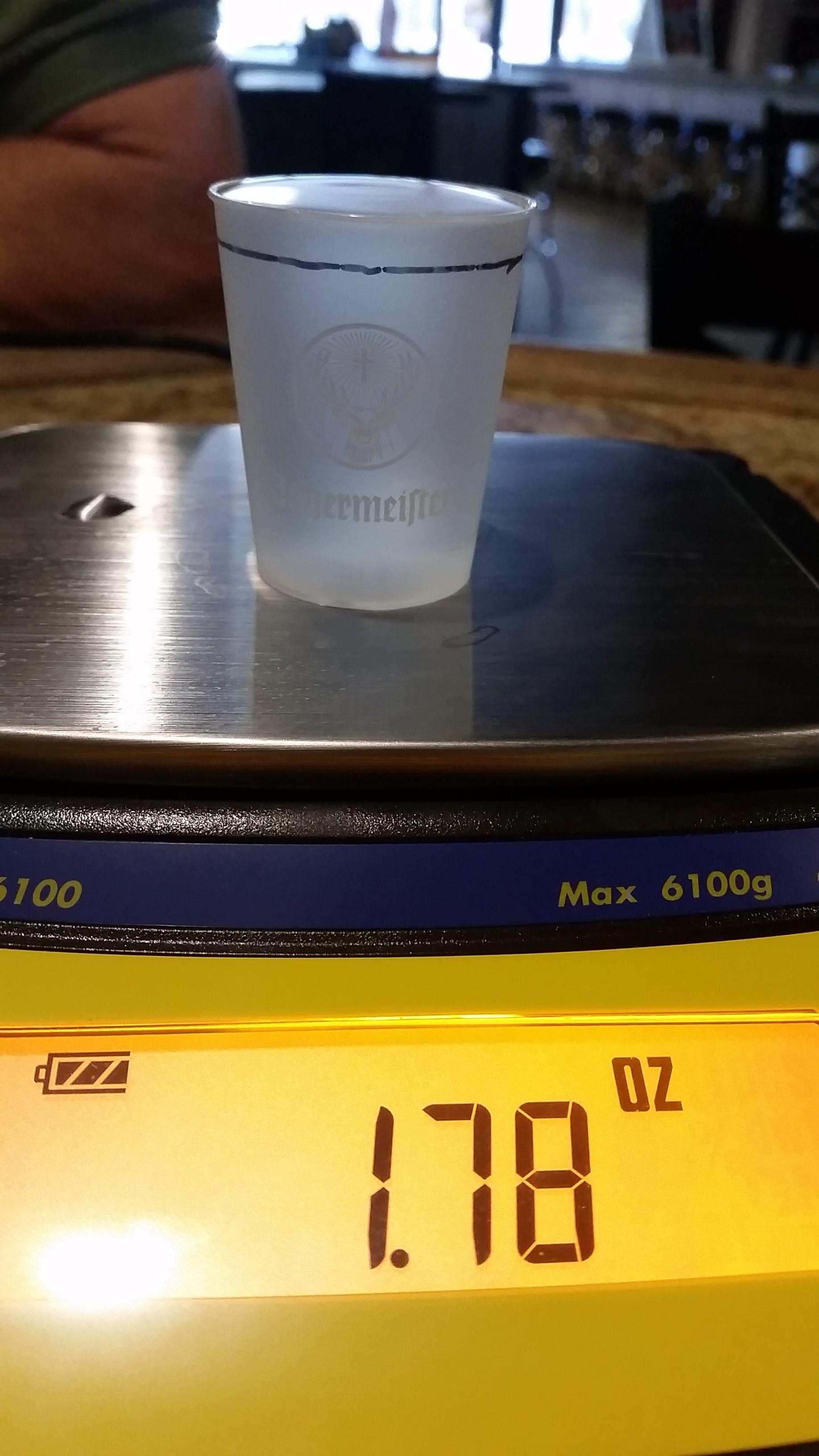 portion size for full promo plastic shot glass